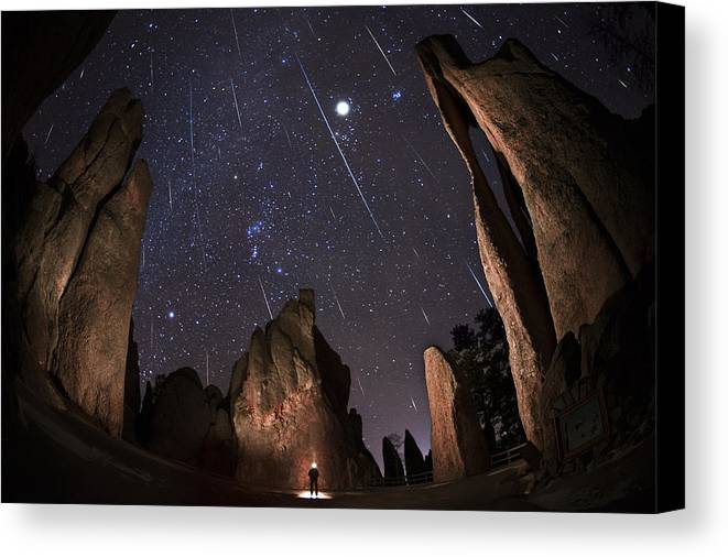 All Rights Reserved Canvas Print featuring the photograph Painting The Needles Under The Geminids Meteor Shower by Mike Berenson