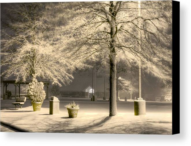 Blizzard Canvas Print featuring the photograph Peaceful Blizzard by JC Findley