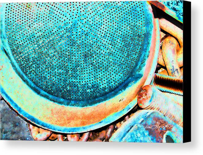 Abstract Art Canvas Print featuring the photograph Perforated II by Sylvia Thornton