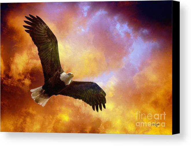 Eagle Canvas Print featuring the photograph Perseverance by Lois Bryan
