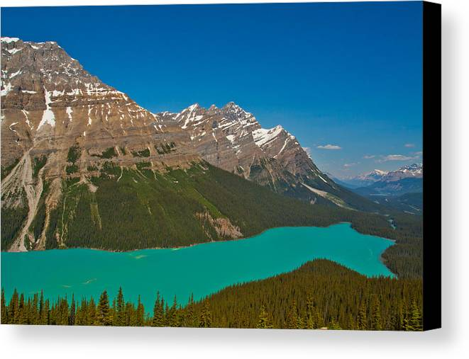 Landscape Canada Rocky Mountain Banff Peyto Lake Icefields Parkway Mount Canvas Print featuring the photograph Peyto Lake by Yi Luo