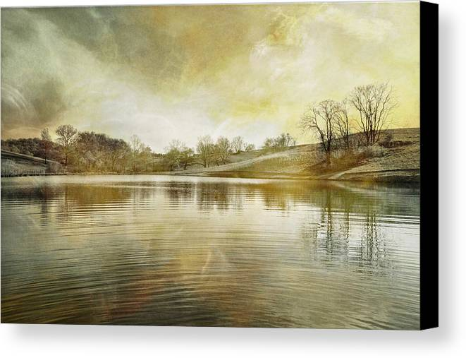 Pond Canvas Print featuring the photograph Pond In Spring by Brenda Hackett