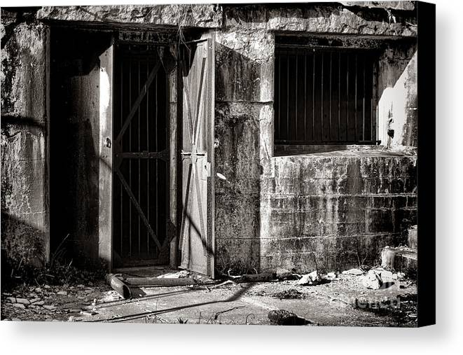 Armored Canvas Print featuring the photograph Protected by Olivier Le Queinec