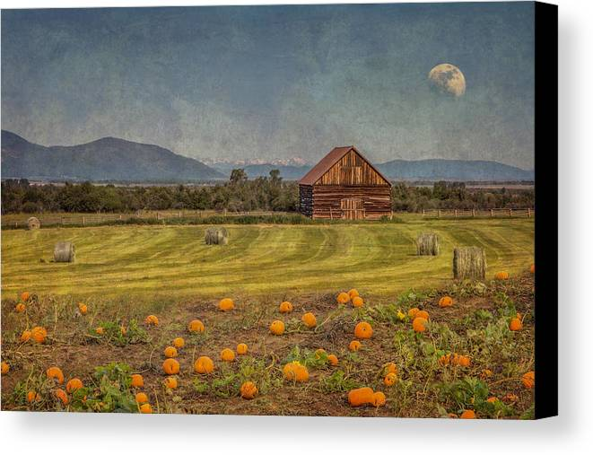 Pumpkins Canvas Print featuring the photograph Pumpkin Field Moon Shack by Patti Deters