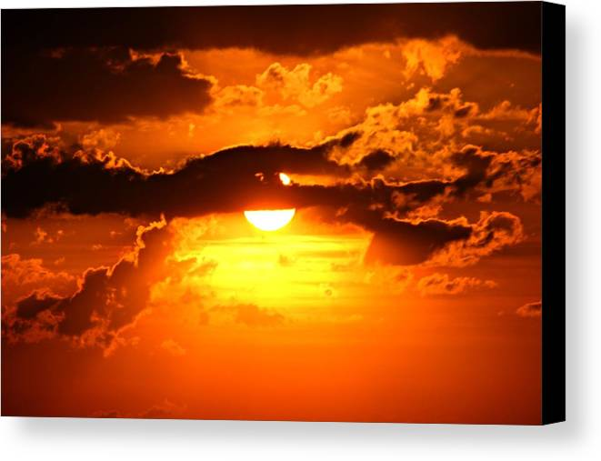 Sun Canvas Print featuring the photograph Radiance Revealed by Joel Rams