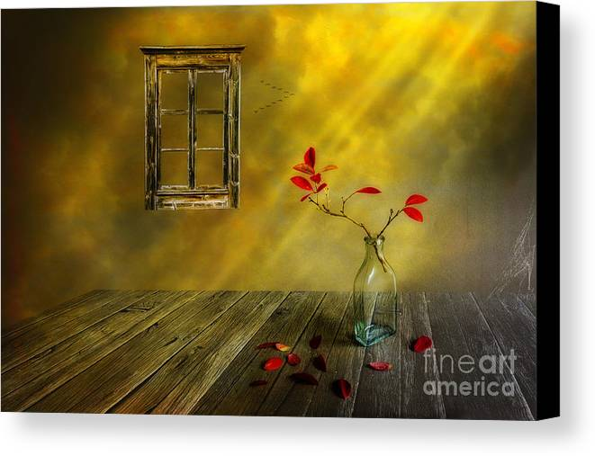 Art Canvas Print featuring the photograph Red Leaves by Veikko Suikkanen