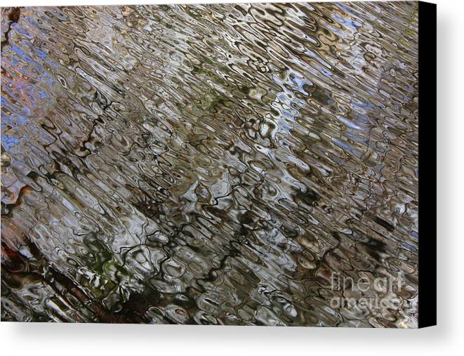 Nature Abstract Canvas Print featuring the photograph Ripples In The Swamp by Carol Groenen