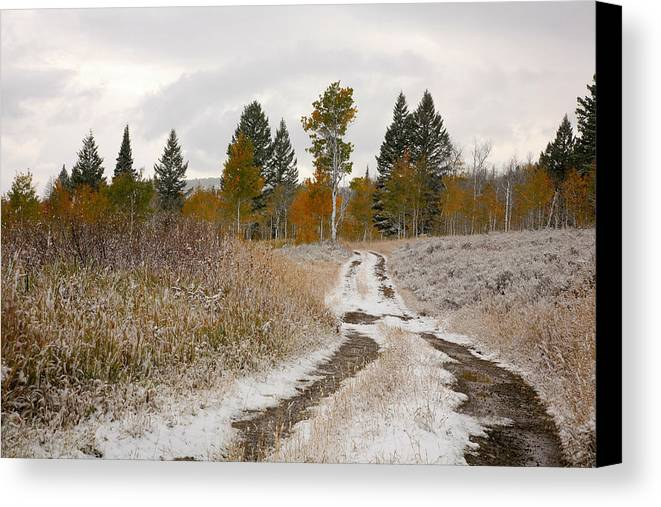 Road Canvas Print featuring the photograph Road To Winter by Todd Roach