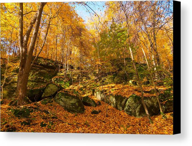 Twinsburg Canvas Print featuring the photograph Rock Ledges Among Gold by Kenneth Sponsler
