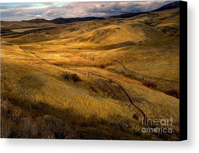 Landsacape Canvas Print featuring the photograph Rolling Hills by Robert Bales