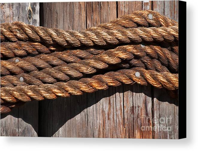 Rope Canvas Print featuring the photograph Roped by Dan Holm