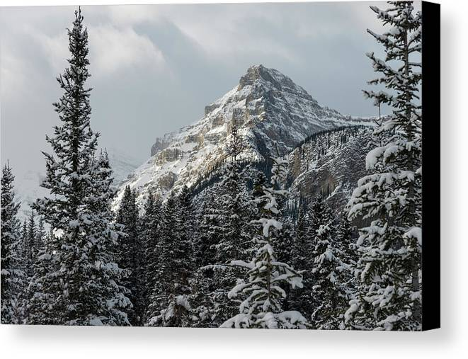 Alberta Canvas Print featuring the photograph Rugged Mountain Peak With Snow by Keith Levit