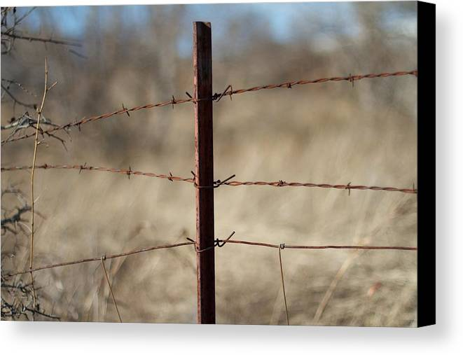Fence Canvas Print featuring the photograph Rust by Roberto Cespedes