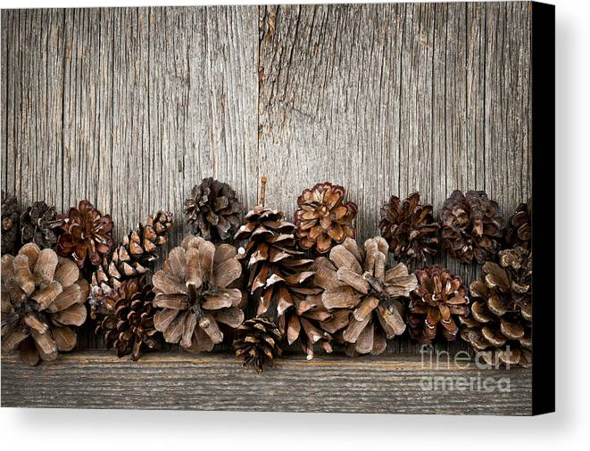 Wood Canvas Print featuring the photograph Rustic Wood With Pine Cones by Elena Elisseeva