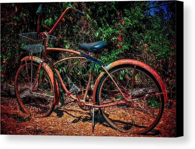 Bike Canvas Print featuring the photograph Rusty by Scott Mullin