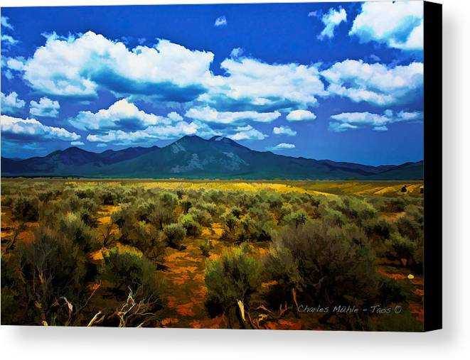 Sage Canvas Print featuring the mixed media Sage by Charles Muhle