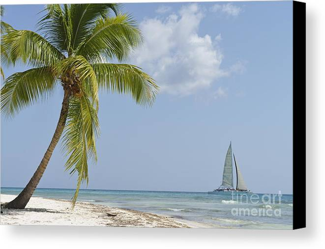 Getting Away From It All Canvas Print featuring the photograph Sailboat Passing By Tropical Beach by Sami Sarkis
