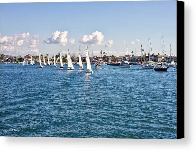 Photograph Canvas Print featuring the photograph Sailing by Angela A Stanton