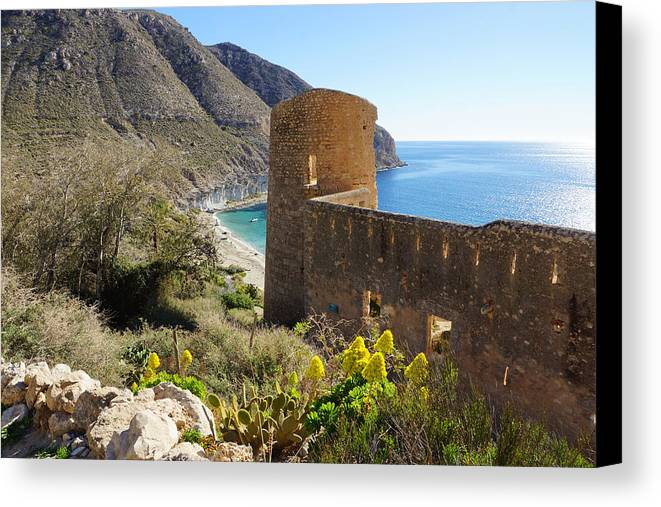 San Pedro Canvas Print featuring the photograph San Pedro In January by Digby Merry