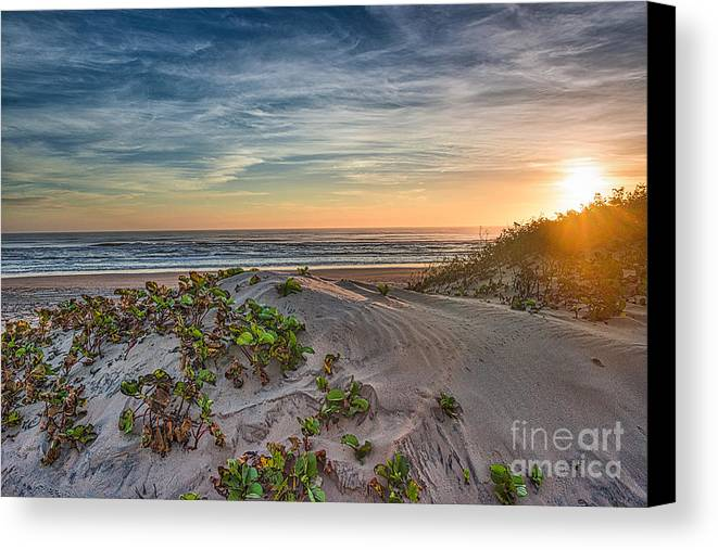 South Padre Island Pictures Canvas Print featuring the photograph Sand Dune At Sunrise by Tod and Cynthia Grubbs