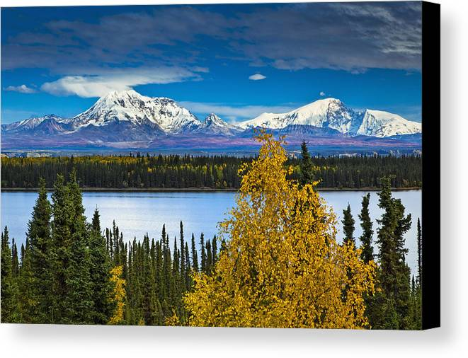 Awazuhara- Reed Canvas Print featuring the photograph Scenic View Of Mt. Sanford L And Mt by Sunny Awazuhara- Reed