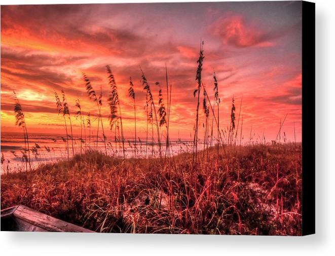 Outer Banks Framed Prints Canvas Print featuring the photograph Sea Oats At Dawn by John Harding