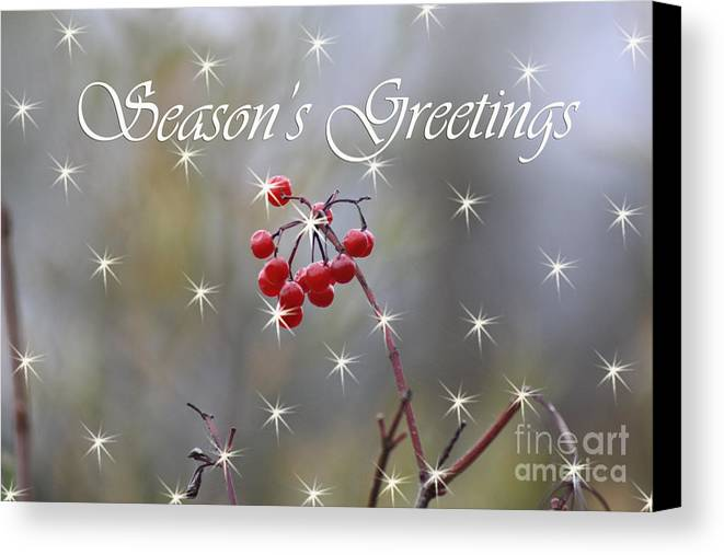 Christmas Cards Canvas Print featuring the photograph Seasons Greetings Red Berries by Cathy Beharriell