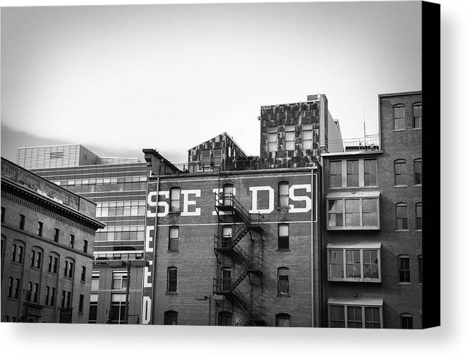 Black And White Canvas Print featuring the photograph Seeds Building Two by Todd Hartzo