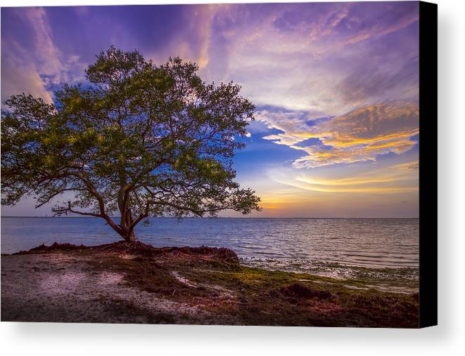 Seascapes Canvas Print featuring the photograph Seeing Is Believing by Marvin Spates
