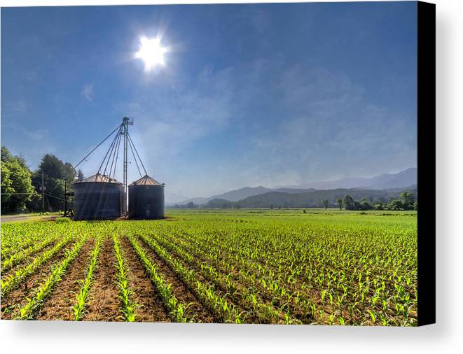 Andrews Canvas Print featuring the photograph Silos by Debra and Dave Vanderlaan
