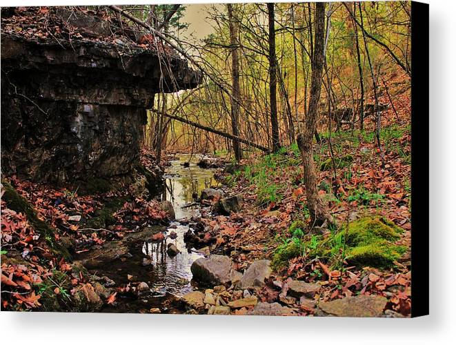 Arkansas Canvas Print featuring the photograph Slate Bottom Creek by Benjamin Yeager