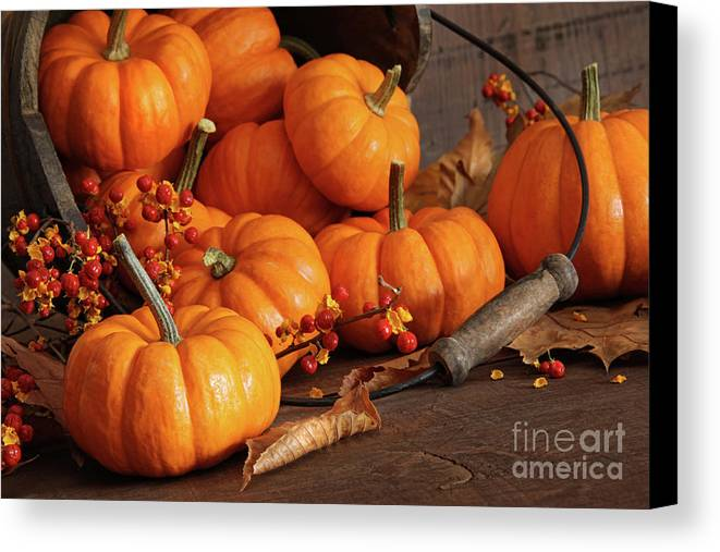 Autumn Canvas Print featuring the photograph Small Pumpkins With Wood Bucket by Sandra Cunningham