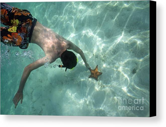 People Canvas Print featuring the photograph Snorkeller Touching Starfish On Seabed by Sami Sarkis