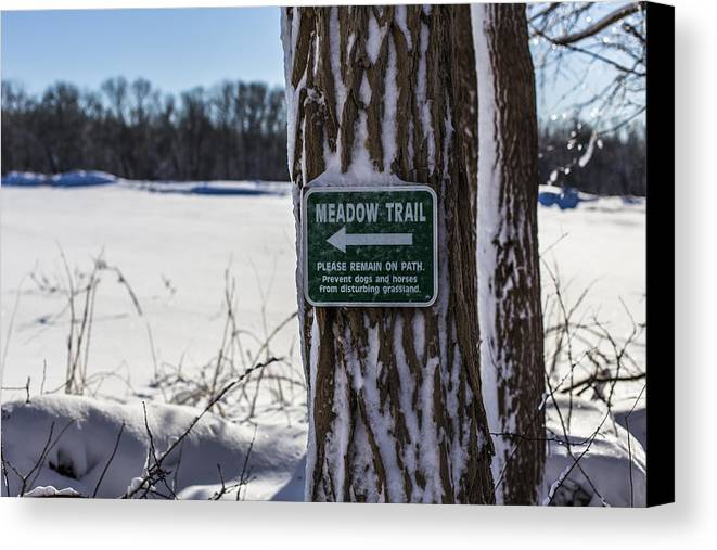 Andrew Pacheco Canvas Print featuring the photograph Snow In The Meadow by Andrew Pacheco