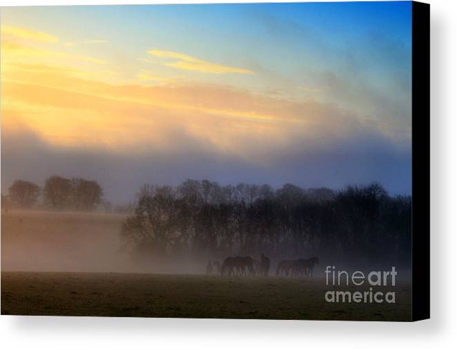 Mist Canvas Print featuring the photograph So Comes The Light by Catherine Perkinton
