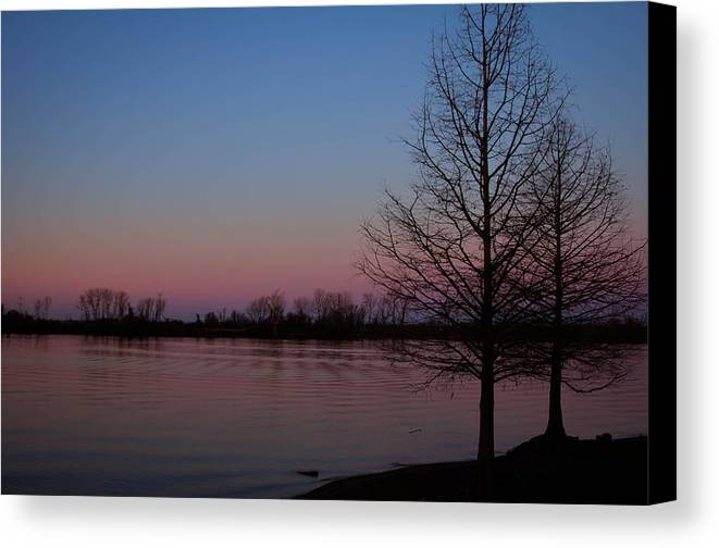 Landscape Canvas Print featuring the photograph Soft Pink Morning by Dawn Loehr