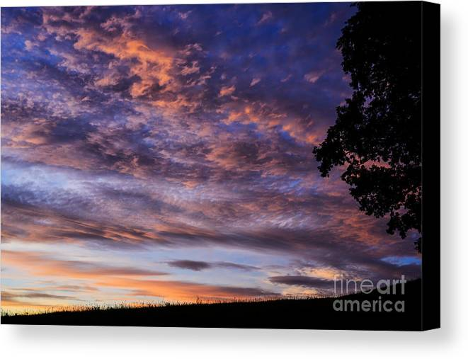 Sunrise Canvas Print featuring the photograph Southern Sky Sunrise by Thomas R Fletcher