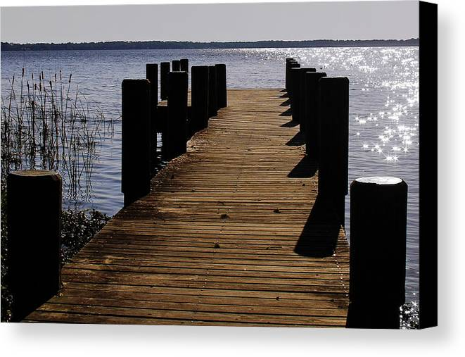 St Canvas Print featuring the photograph St Johns River Florida - A Chain Of Lakes by Christine Till