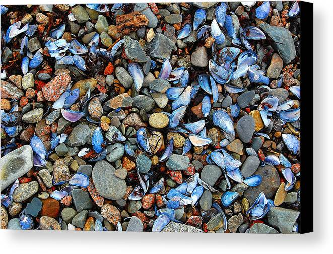 Abstract Canvas Print featuring the photograph Stones And Seashells by Jim Southwell