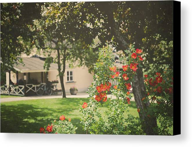 Park Canvas Print featuring the photograph Summer In The Park by Ari Salmela
