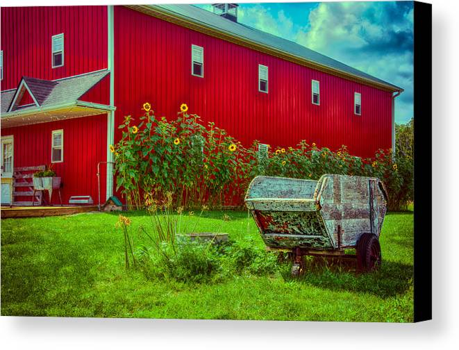 Barn Canvas Print featuring the photograph Sunflowers Beside A Big Red Barn by Gene Sherrill