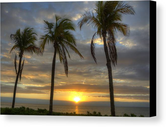 Sunrise Canvas Print featuring the photograph Sunrise Palms by Donna Doherty