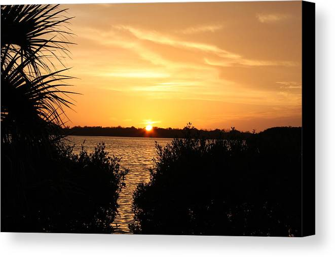 Nature Canvas Print featuring the photograph Sunset Over Intercoastal by Shari Bailey