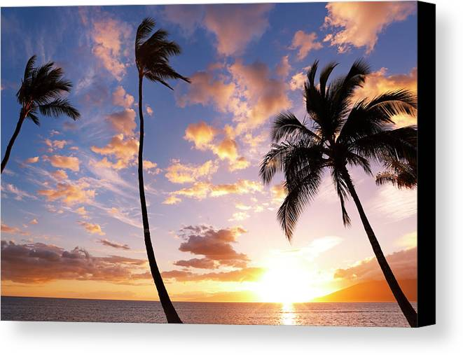 Background Canvas Print featuring the photograph Sunset Palm Trees In Hawaii by Design Pics Vibe