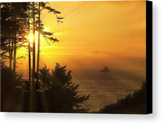 Lighthouse Canvas Print featuring the photograph Sunset Thru The Trees by Andrew Soundarajan