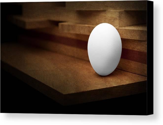Animal Egg Canvas Print featuring the photograph The Egg by Tom Mc Nemar
