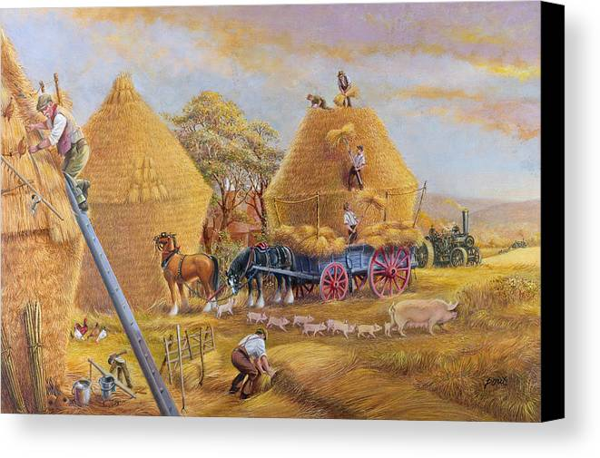 Haystacks; Stack; Hay; Stacking; Harvesting; Harvest; Farm; Field; Fields; Farmers; Laborers; Piglets; Pig; Sow; Steam; Engines; Ploughing; Engine; Shire Horse; Horses; Wagon; Cart; Rural; Livestock Canvas Print featuring the painting The Last Load by Dudley Pout