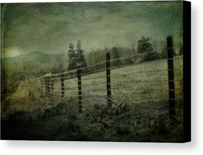Snow Canvas Print featuring the photograph The Morning After by Kathy Jennings