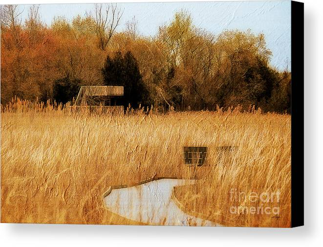 Marsh Canvas Print featuring the photograph The Overlook by Lois Bryan