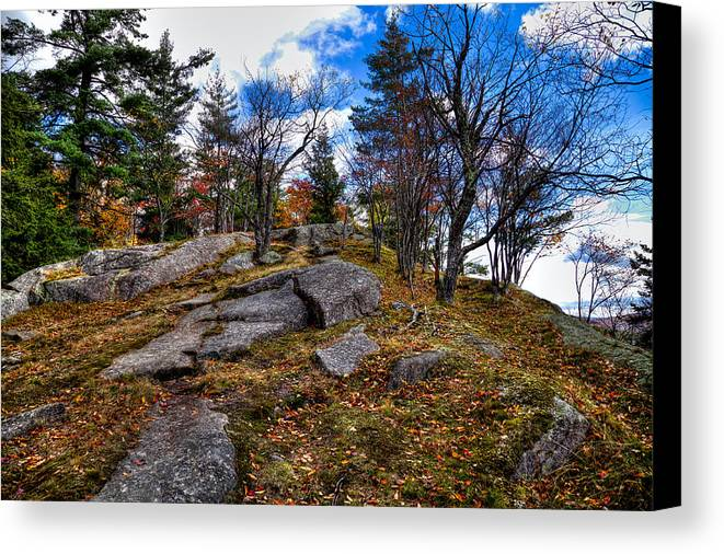 Adirondack's Canvas Print featuring the photograph The Rocks Above Eagle Bay IIi by David Patterson